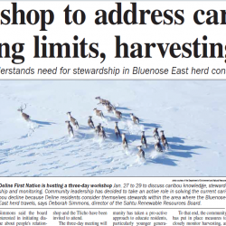 Workshop to address caribou hunting limits, harvesting