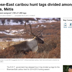Bluenose-East caribou hunt tags divided among First Nations, Métis
