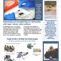 New newsletter available